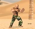 Desert Ambush